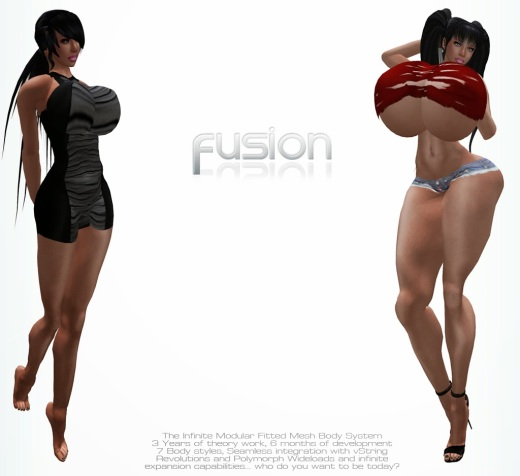 According to the official promotional material, the theory behind the Fusion modular fitted mesh body system has been worked on for three years, and the system itself was under development for six months. Please click on the picture for the full-size version (image credit: Violet Studios)